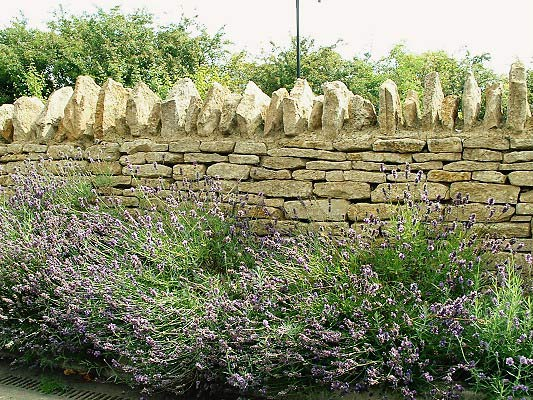 stone_wall_1