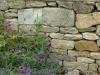 stone_wall_3